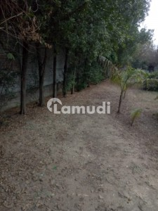 8 Kanal Farm House Land For Sale In Bedian Road