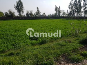 40 Kanal Land For Farm House For Sale In Bedian Road