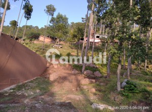 Plot  Are Available In Murree Expressway For Sale