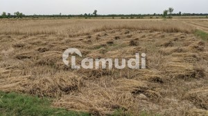 Agricultural Land For Sale On Main Mattital Rd 2 Kilometres From Dha Multan