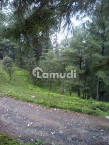 7.5 Commercial Plot Is Available For  Sale Near Nathia Galli And Ayubia