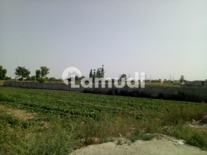 Agricultural Land Is Available For Sale On Expressway Canal Road