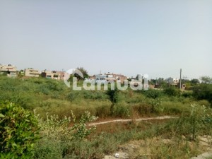 Agricultural Land Is Available For Sale
