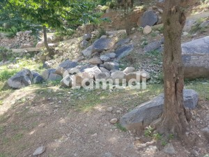 9000  Square Feet Commercial Plot Available For Sale In Kalam