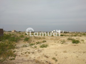 We Are Thrilled To Offer A Residential Plot At Gulshan E Shahbaz Housing Scheme Near M 9 Tole Plaza Jamshoro