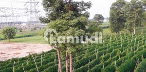 10 Acres Agricultural Industrial Land Adjacent To Balloki Power Plant For Sale