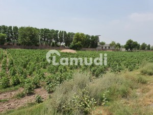 Commercial Land Main Gt Road Near Khanewal Toll Plaza For Sale