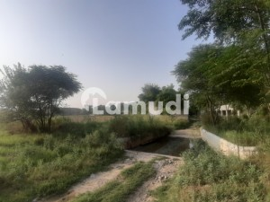 Poultry Farm Is Available For Rent