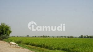 Agriculture Land Is Available For Sale Qureshi Farms