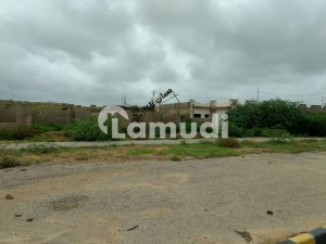 Plot Available For Sale In Noman Royal City