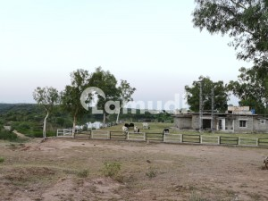 4 Kanal Farm Houses Is Available In 92 Lac