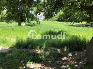 Plot Is Available For Sale Shangrila Kachura Valley