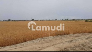 846000 Square Feet Agricultural Land In Kot Radha Kishan Is Available