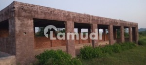 100 Kanal Farm House With Agricultural Land With Very Reasonable Price For Sale
